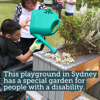 SBS Inclusive Gardening Program